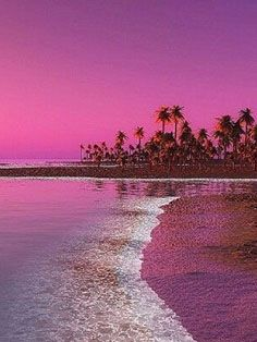 #veronikamaine #tropical #vacation #inspiration #summer13 #sunset #pink