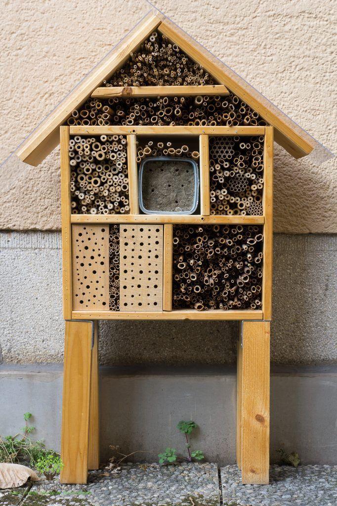 69 besten schautafeln nisthilfen insektenhotel u wildbienen poster insect hotel wild bee. Black Bedroom Furniture Sets. Home Design Ideas