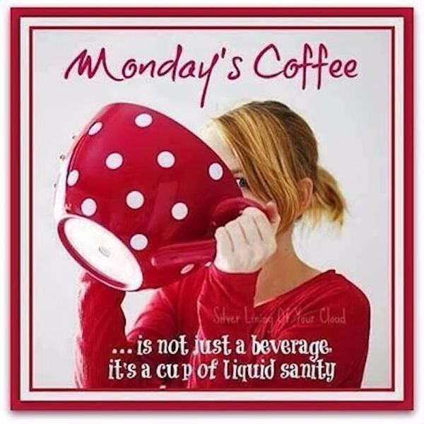 Monday Morning Humor Quotes: 201 Best Images About Monday, Monday On Pinterest