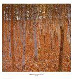 Beech Forest Premium Poster by Gustav Klimt at Art.com