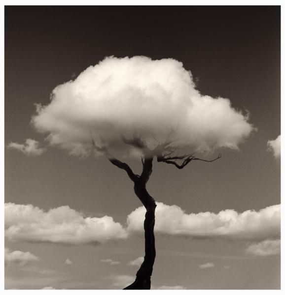 This makes me smile:) by Chema Madoz