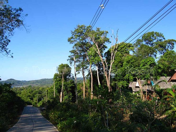 Jimmy Hut is along the quiet main road @ Koh Kood (Thailand)