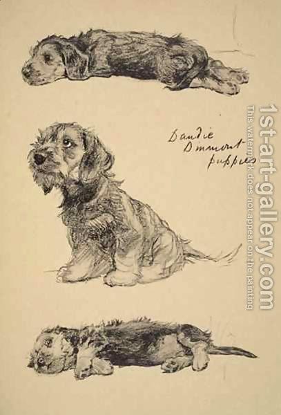 Cecil Charles Aldin:Dandie Dinmont Puppies