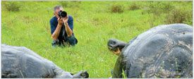 The Galápagos Expedition Experience, Cruise the Galapagos Islands with National Geographics