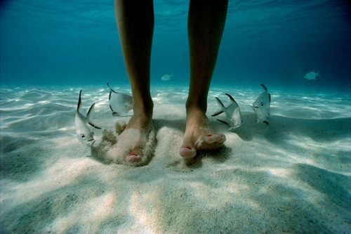 Underwater bare feet in sand