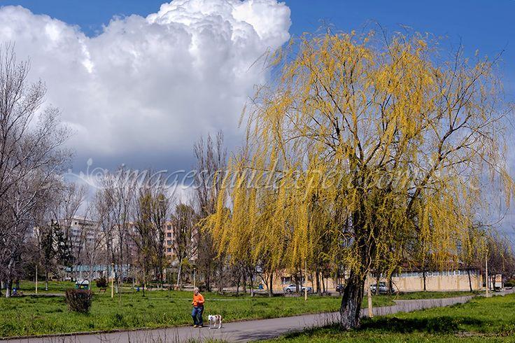 Fotografie de peisaj - inceput de primavara / Landscape Photography - The beginning of spring / Landschaftsfotografie - Der Beginn des Fruhling/ La photographie de paysage - Le debut de printemps