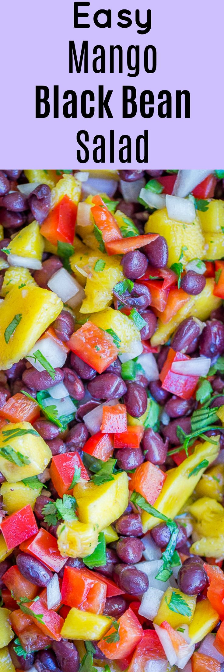 Easy Mango Black Bean Salad - The perfect side dish or condiment!  Great for topping burgers, tacos and salads with!  Gluten free/vegan/summer side