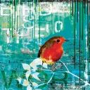 canvastavlor | turkos | fågel | abstrakt konst | häftiga och coola tavlor