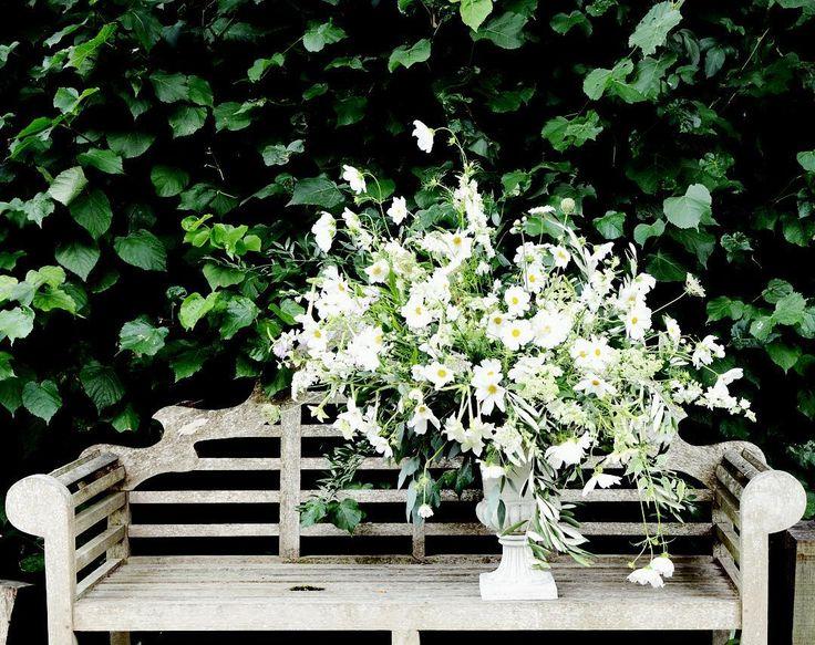 It's a big one! More cosmos love! - - - - - #gatherandcurate #gatheringbeauty #underthefloralspell @flowerona #stylingtheseasons #petalsandprops #weekendflowers #inspiredbypetals #inspiredbynature #sunday_sundries #embracingtheseasons #bridebook #ccseasonal #dsfloral #pursuepretty #cherishandrelish_august #mystillsundaycompetition #still_life_onchairs #flowerschool #weddingflorist #suffolk