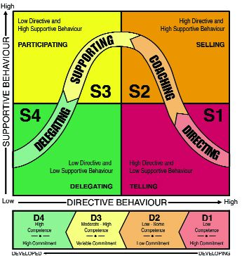 Situational Leadership Development Levels (ICEBREAKER)