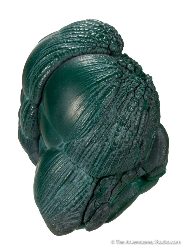 Malachite, Tonglushan Mine, Daye City, Hubei Province, China, Small Cabinet, 8.2 x 5.3 x 5.2 cm, Closely resembling rounded flower buds ready to burst into full bloom, this malachite specimen somehow looks alive and moving., For sale from The Arkenstone, www.iRocks.com. For more details on this piece and others, visit http://www.irocks.com/minerals/specimen/46615