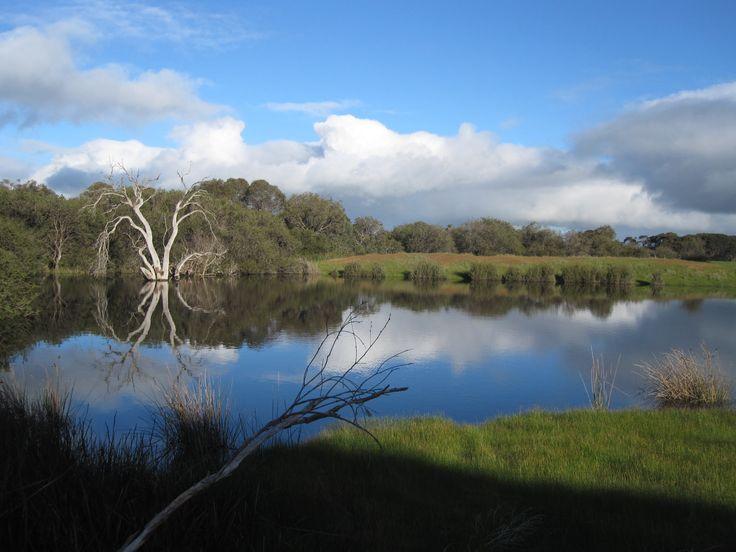 The Dam, 'Roo's Rest', Kangaroo Island