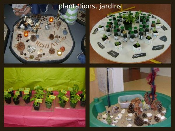 41 best images about le jardin en maternelle on pinterest for Jardin 5 sens
