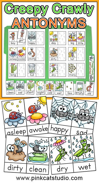 Creepy Crawly Antonyms File Folder Game by Pink Cat Studio - This insect theme antonyms matching game makes a great center activity for your students who love bugs.