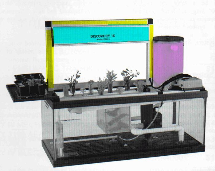 104 best aquaponics images on pinterest aquaponics for Aquaponics fish food