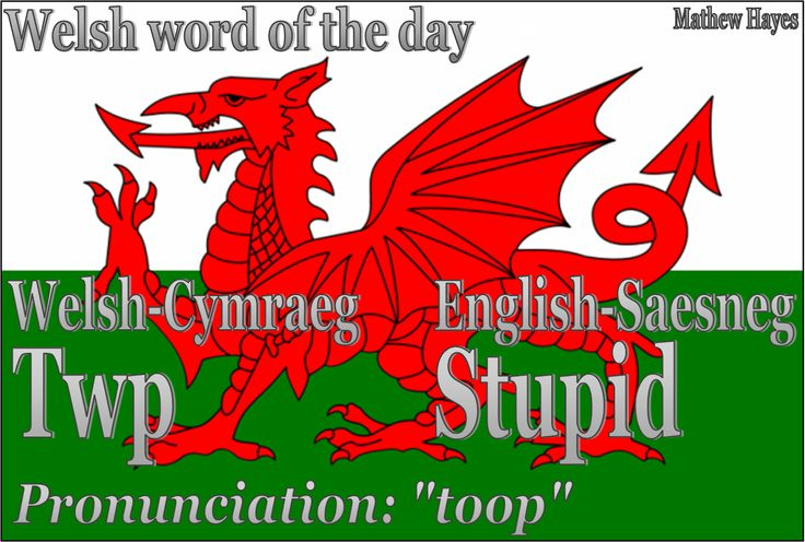 Welsh Word of the Day: Photo