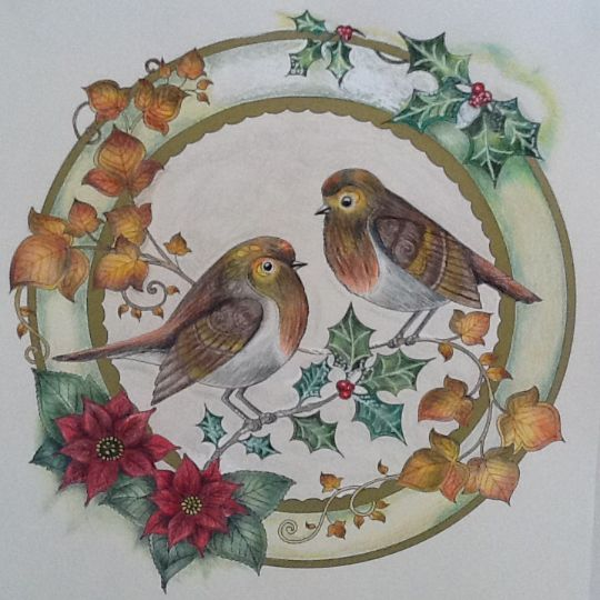 209 Best Images About Johanna Basford Christmas On Pinterest