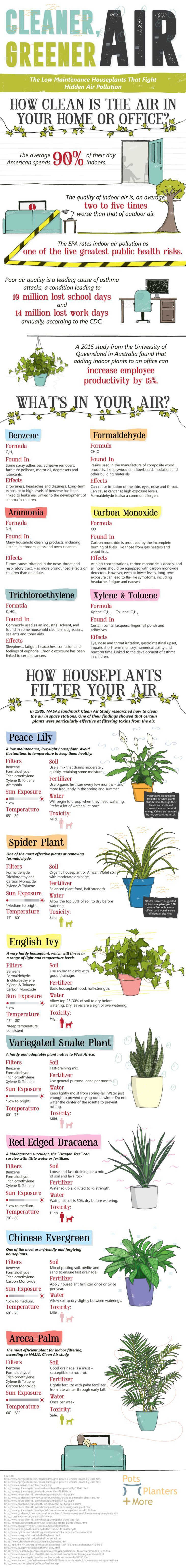 Best 20 air pollution ideas on pinterest global warming for Pollution fighting plants