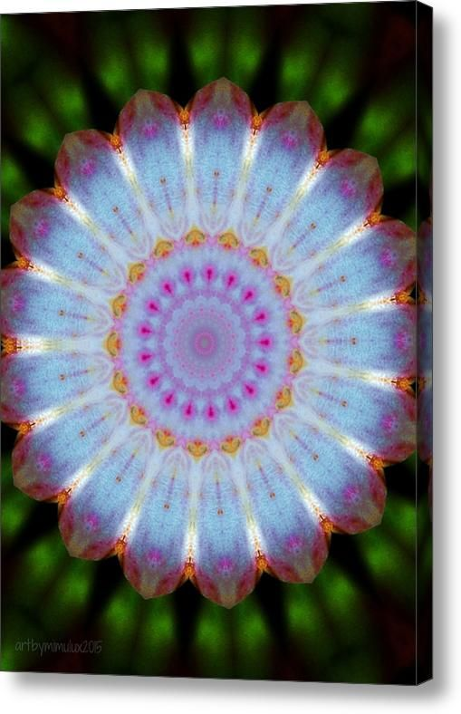 Rosepetals Mandala Acrylic Print By Mimulux Patricia No