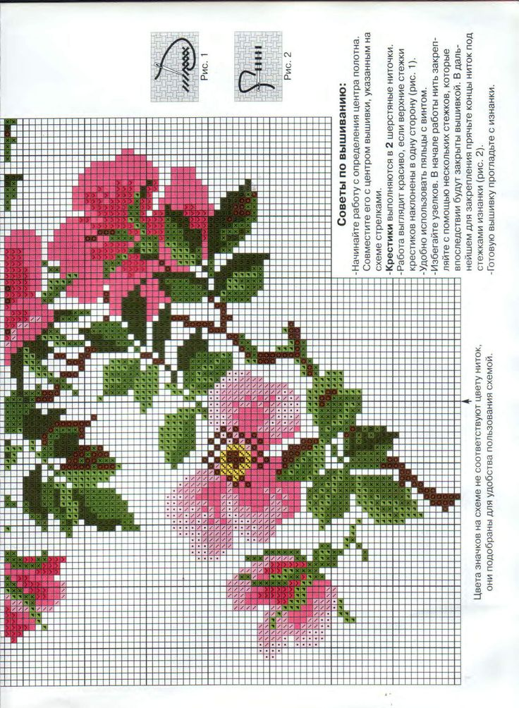 cross stitich roses 2