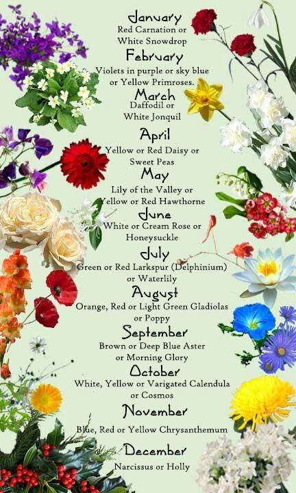 Your Birth Month & Flowers Happy Birthday Donya Thompson