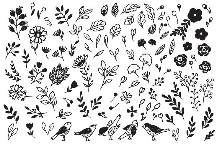Hand drawn flowers set by Maria Galybina on @creativemarket