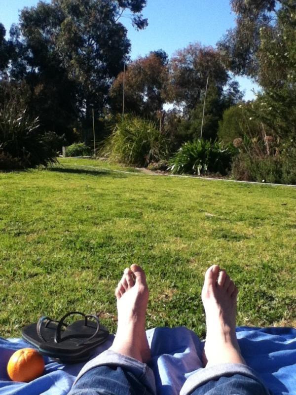 Day28: Garden - enjoying the sunshine by @Jraa111