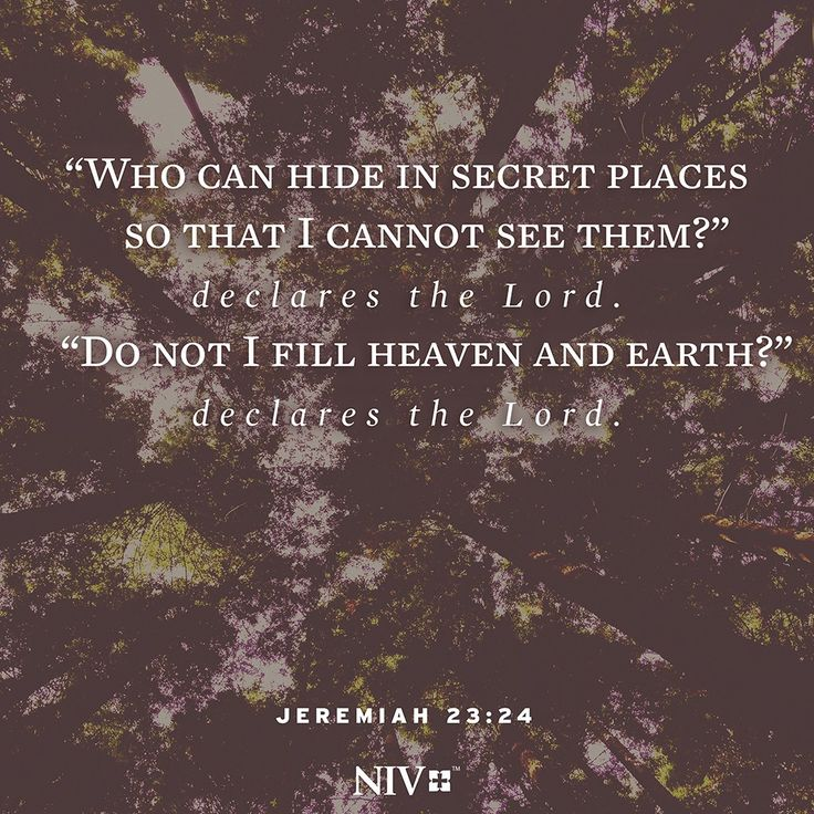 NIV Verse of the Day: Jeremiah 23:24