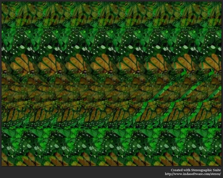 3d hidden pictures | Butterfly : Stereogram Images, Games, Video and Software. All Free!