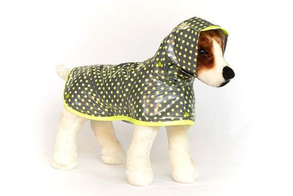 Agrume Pop : Chien imperméable, manteau imperméable chien, chien imperméable avec capuche, imperméables pour chiens