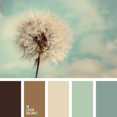 beige, celeste, celeste y marrón, color blanco algodón, colores del diente de león, elección del color, marrón claro, marrón oscuro, matices de colores fríos, paleta de colores de invierno, paleta de invierno, tonos marrones.
