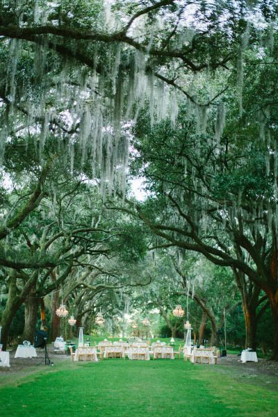 Spanish moss reception: http://www.stylemepretty.com/little-black-book-blog/2015/02/16/enchanting-elegance-at-legare-waring-house/ | Photography: Clay Austin - http://www.clayaustinphotography.com/