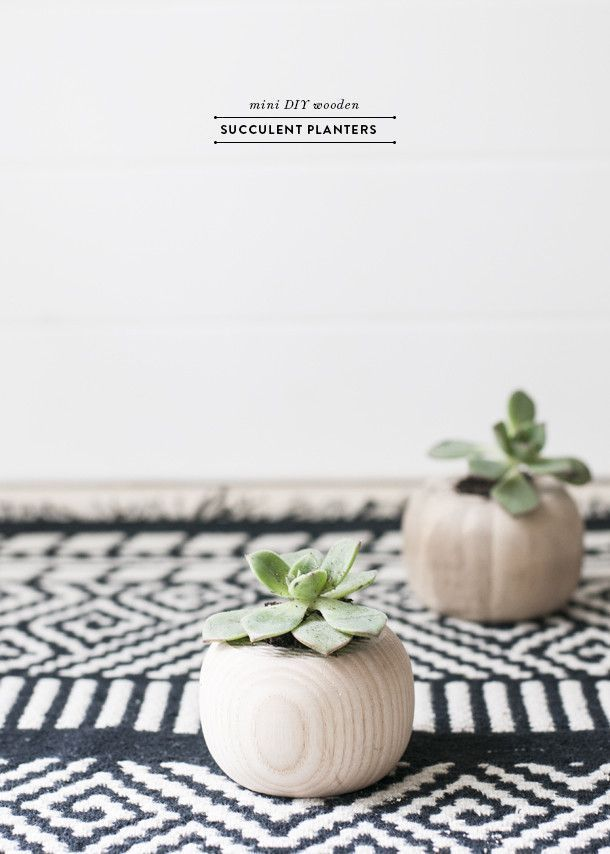 DIY Mini wooden succulent planters.