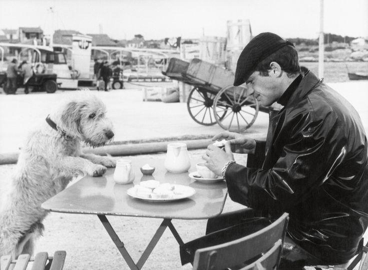 Jean-Paul Belmondo sul set del film Buccia di banana diretto da Marcel Ophulse. - (Raymond Cauchetier, James Hyman gallery)