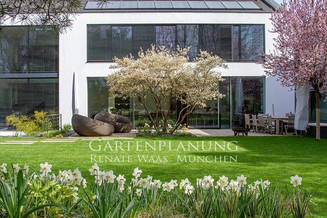 Die Schonsten Blumenzwiebeln Fur Moderne Garten Garten Moderner