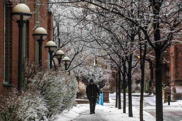 A man walks past trees with frozen branches during an ice storm in Toronto