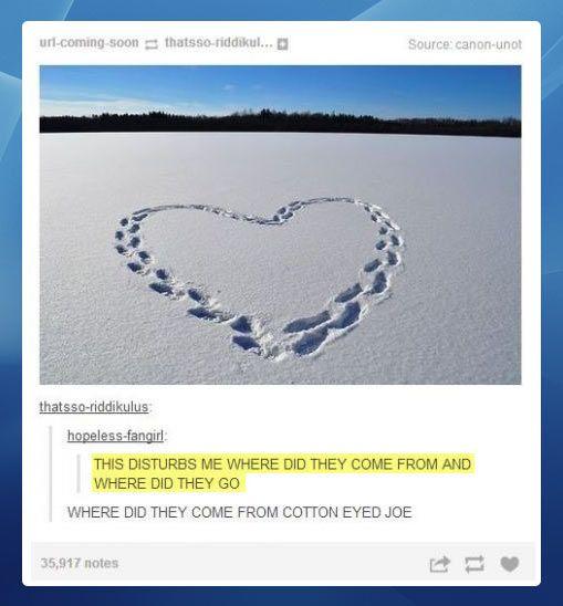 I laughed so hard omg