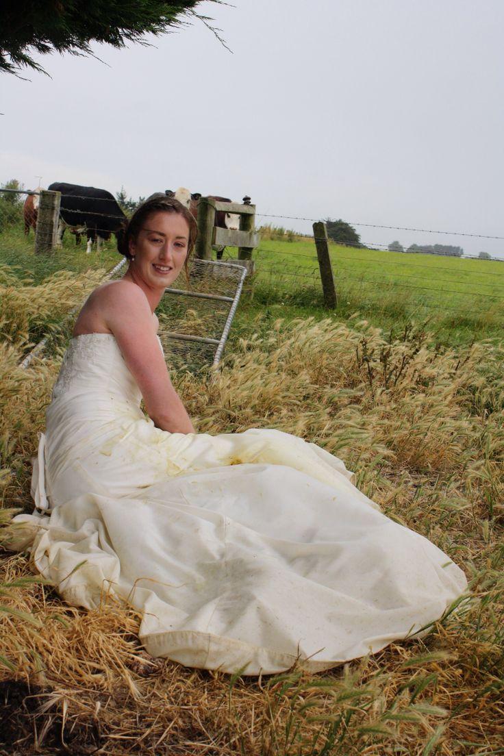 Cows. Paddock. Trash my wedding dress