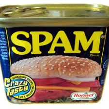 Why I love spam