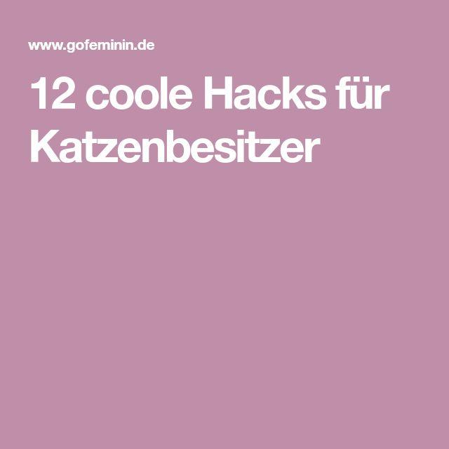 12 coole Hacks für Katzenbesitzer