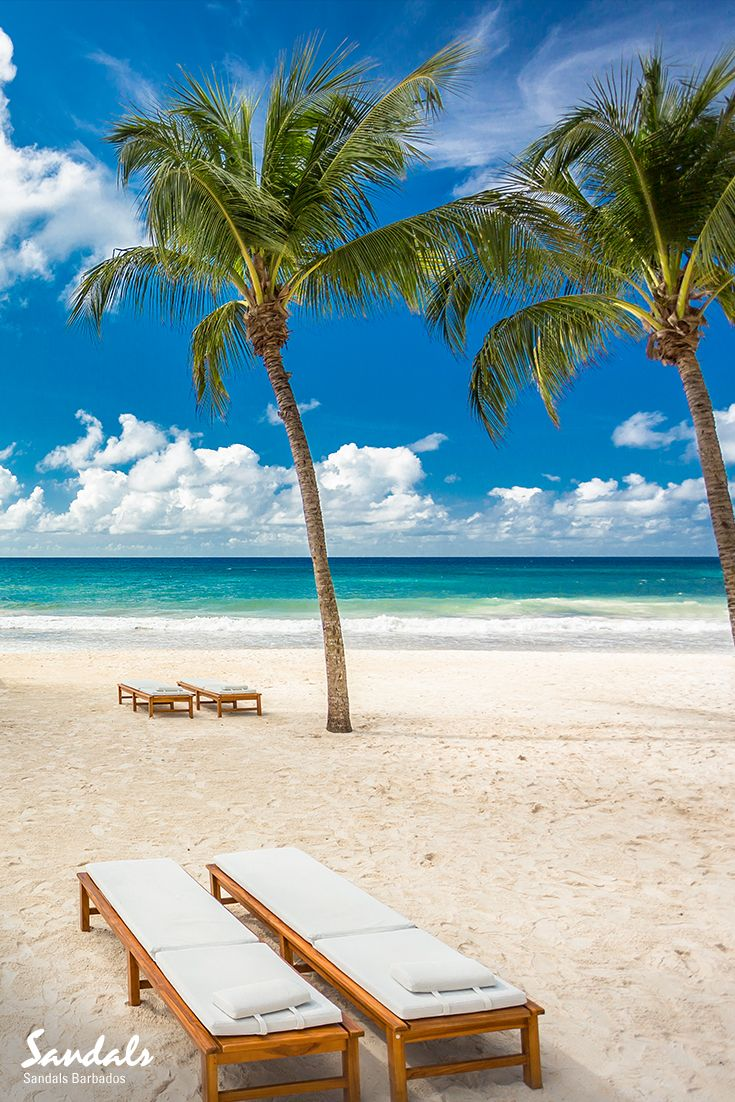 best dover beach ideas ocean cliff white  dover beach at sandals