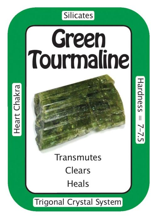 "Crystal Card of the Day: Green Tourmaline, ""My heart is filled with love, peace, and harmony."" Like all Tourmalines, Green Tourmaline is a metaphysically protective  stone which is said to balance and harmonize the Chakras. These gemmy  Green Tourmaline chips are ideal for healing purposes as they can focus  their healing energies, clearing the aura and removing blockages.  Meditating with Green Tourmaline can enhance mature emotional  development by pulling higher vibrational frequencies in…"