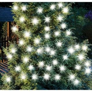 Solar String Lights | 50 LED Large Bulb String Lights White large bulb string decorative lights from Cole and Bright great for wrapping around trees and bushes in the garden. They charge through daylight and provide wonderful bright light after dark.