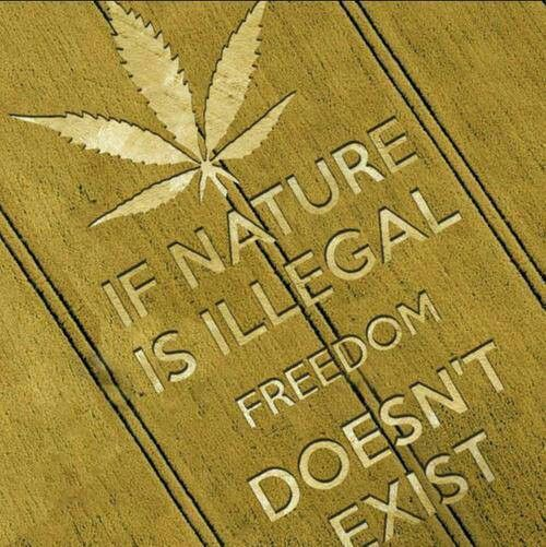 Free the Weed!...of course we can expect Monsanto to genetically modify that as well.