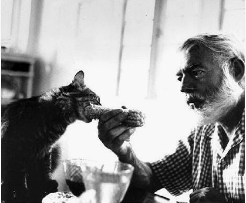 Ernest Hemingway convinces his kitty to try out corn