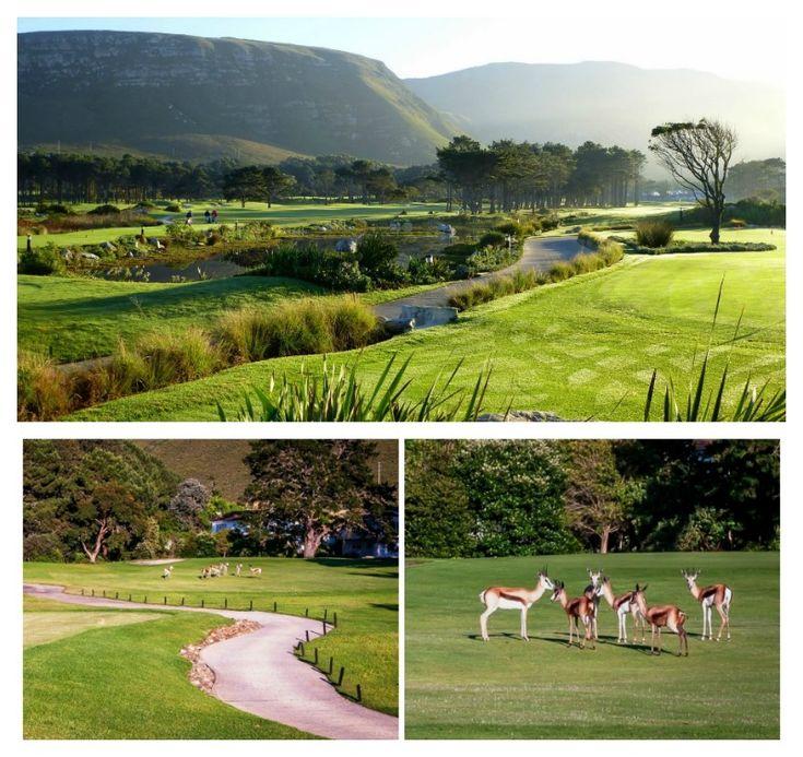 Hermanus Golf Course           Address: Golf Road, Hermanus Tel: 028 - 312 1954 / 5 Email: bookings@hgc.co.za