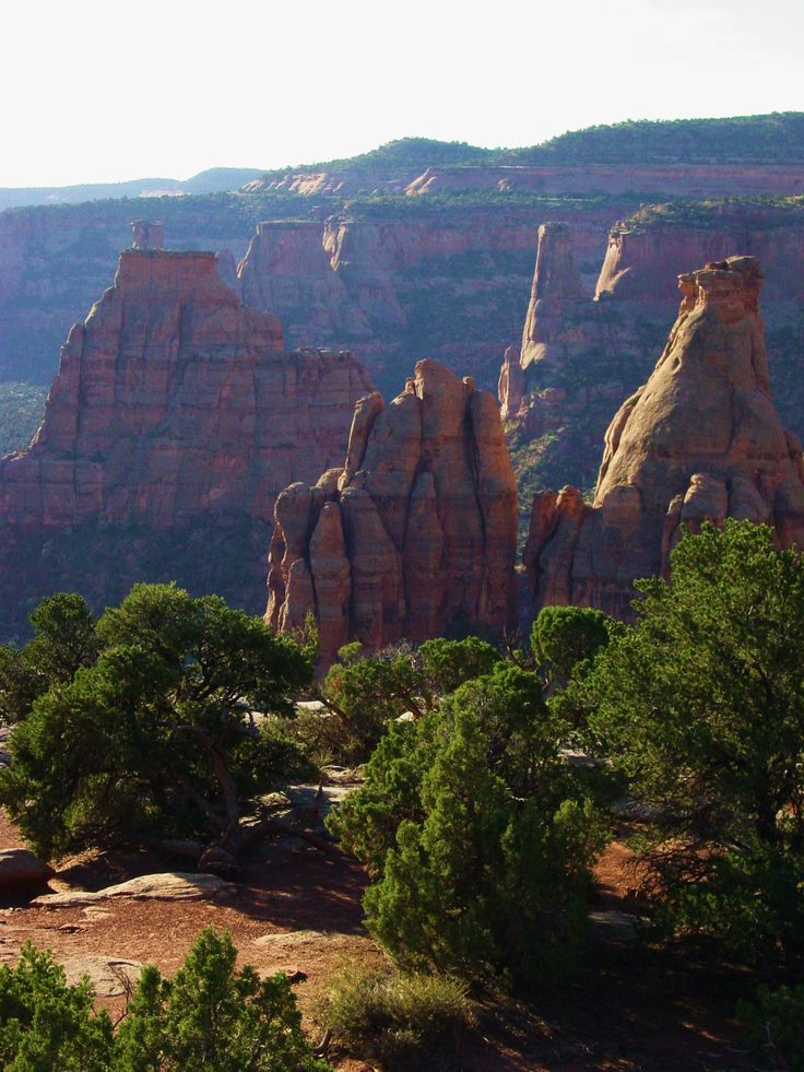 Colorado National Monument - Canyon Rim