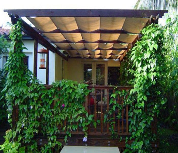 Trellis Canopies / Cover Ideas | Pergola Gazebos (shared via SlingPic)