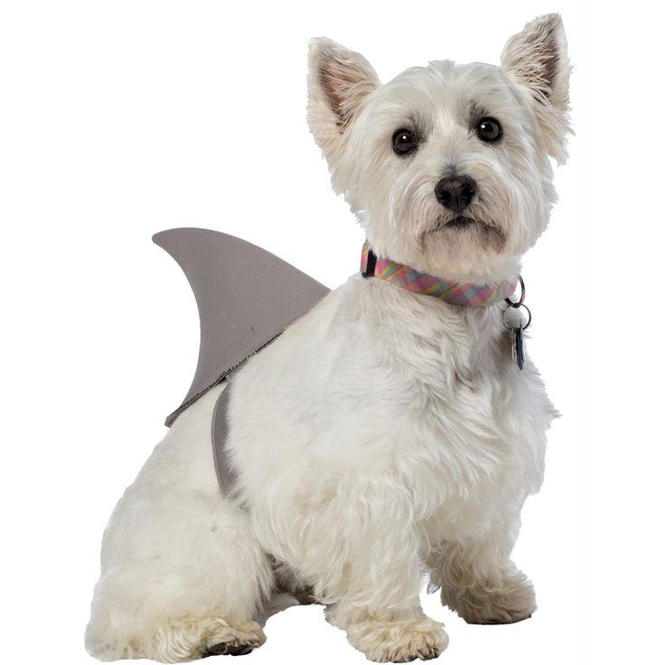 shark fin dog costume xlxxl
