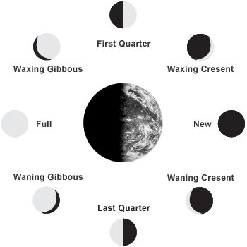 The Monthly Cycle Of The Moon And Its Phases ... 402563 └▶ └▶ http://www.pouted.com/?p=24796